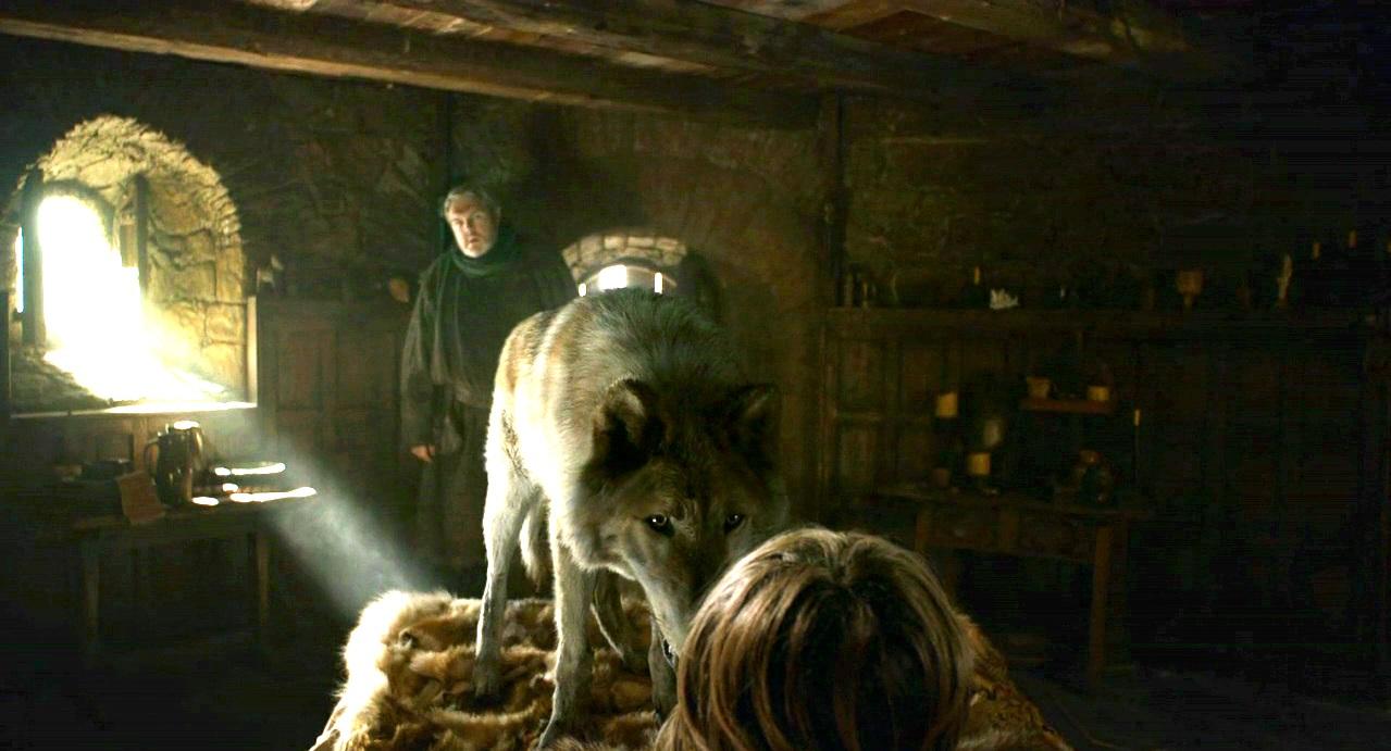 Bran-with-Summer-and-Hodor-bran-stark-31146982-1279-691